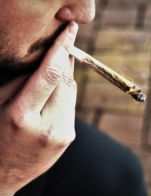 Cannabinoid addiction program