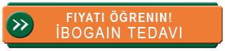 İbogain ile tedavinin ücretini öğren